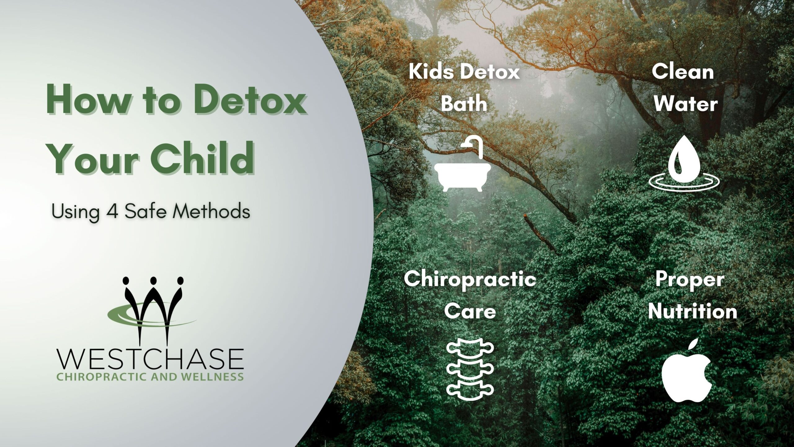 infographic of how to detox your child using 4 safe methods